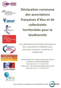 declaration_collectivites-250x363