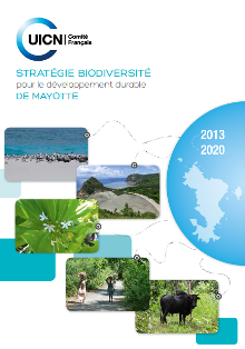 Capture_strategie_Mayotte_site_web-220x314