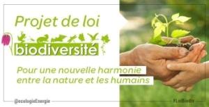 PJL_Biodiversite-300x154