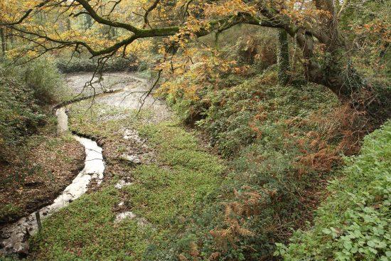 Restauration hydromorphologique de la rivière de Pénerf © Kerglerec