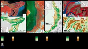 cartographie mangroves