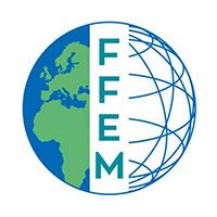 ffem-web