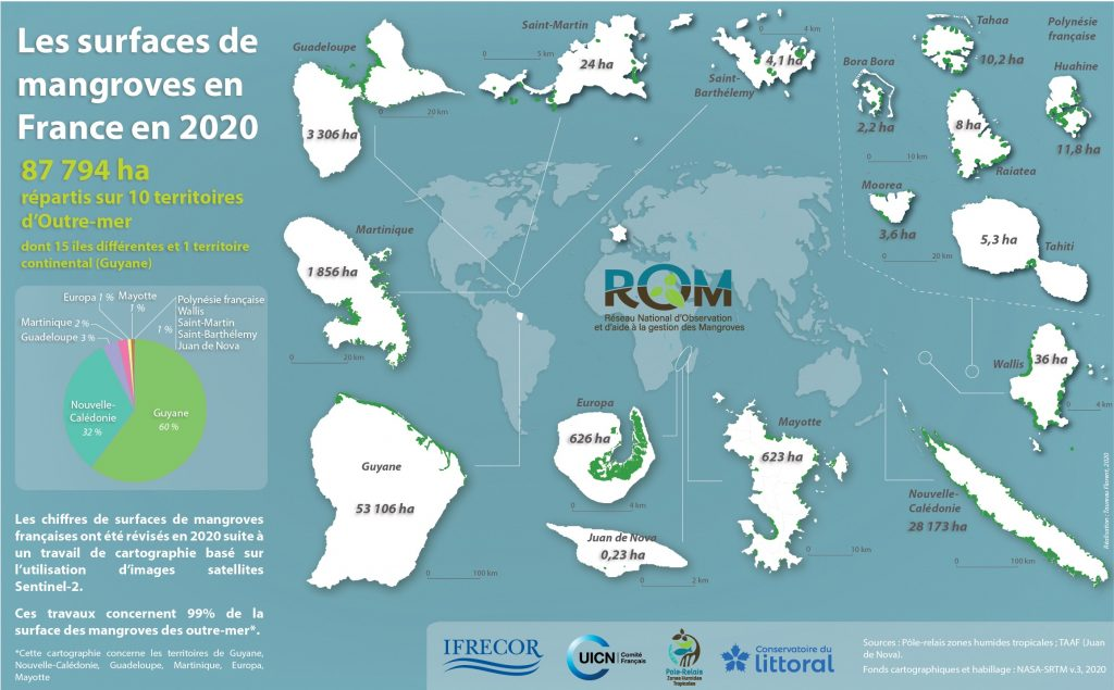 Mangroves en France en 2020 - CARNAMA nov2020