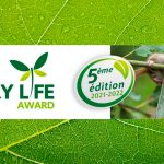 quarry life award